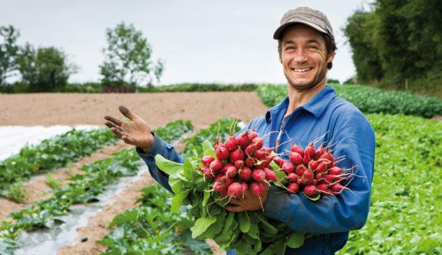 La bio, une force pour l'économie locale